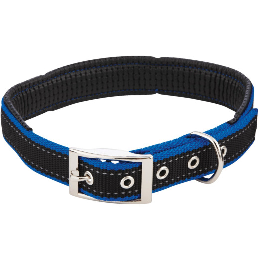 Westminster Pet Ruffin' it Reflective 24 In. Nylon Dog Collar